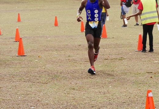1042618carifta-games-course2