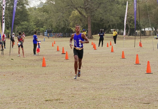 1042622carifta-games-course2