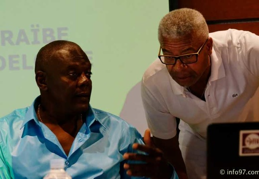 meeting-region-guadeloupe-2014-03