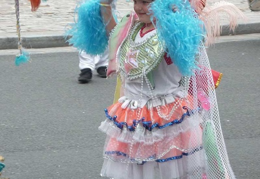 defile-paris-carnaval1446