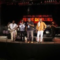 terre-de-blues-artiste4-24