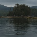 tofino-BC-ours-36