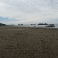 tofino-BC-ours-40