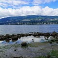 vancouver-stanley-park-11
