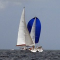 tour-voile-guadeloupe24