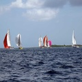 tour-voile-guadeloupe26
