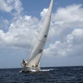 tour-voile-guadeloupe54