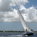 tour-voile-guadeloupe57